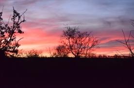 Sunrise 414