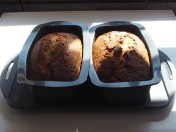 Just out of the Oven